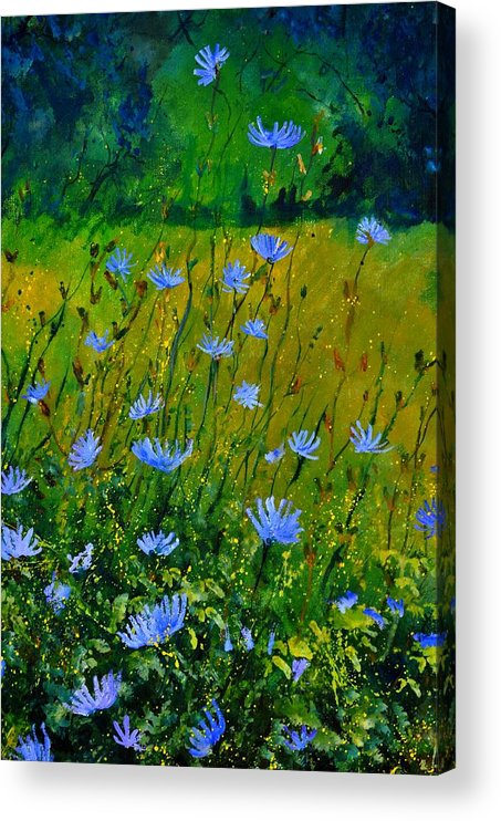 Floral Acrylic Print featuring the painting Wild Flowers 911 by Pol Ledent