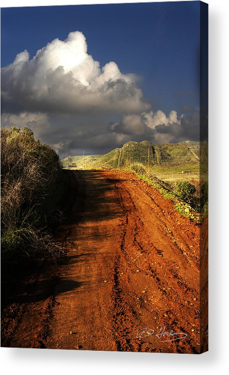 Landscape Acrylic Print featuring the photograph Noble Road by Richard Gordon