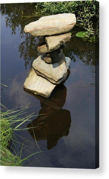 Nature Acrylic Print featuring the photograph Above and Below by Alan Rutherford