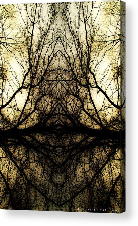 Faith Acrylic Print featuring the photograph Against The Light by Jonathan Ellis Keys
