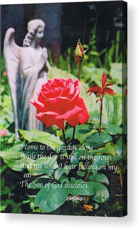 Angel Statute Acrylic Print featuring the photograph Angel with Roses 2 by Seth Weaver
