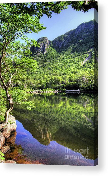 White Mountains Of New Hampshire Acrylic Print featuring the photograph Eagle cliff by Diana Nault