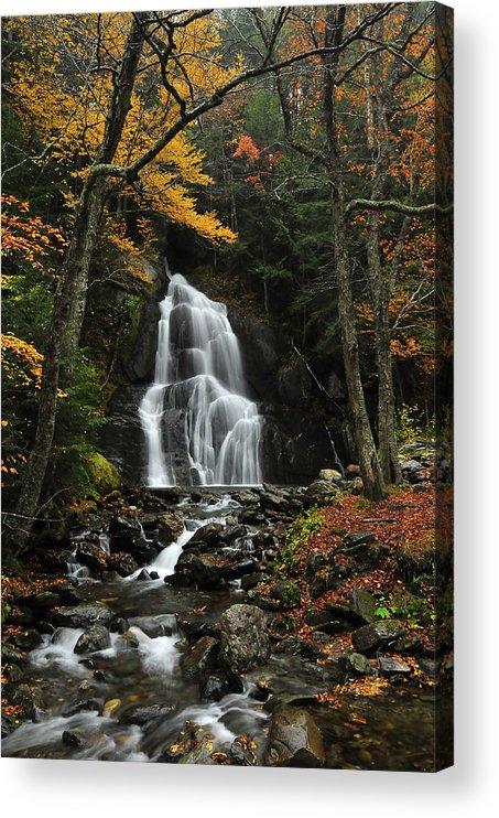 Glen Moss Falls Acrylic Print featuring the photograph Glen Moss Falls by Mandy Wiltse