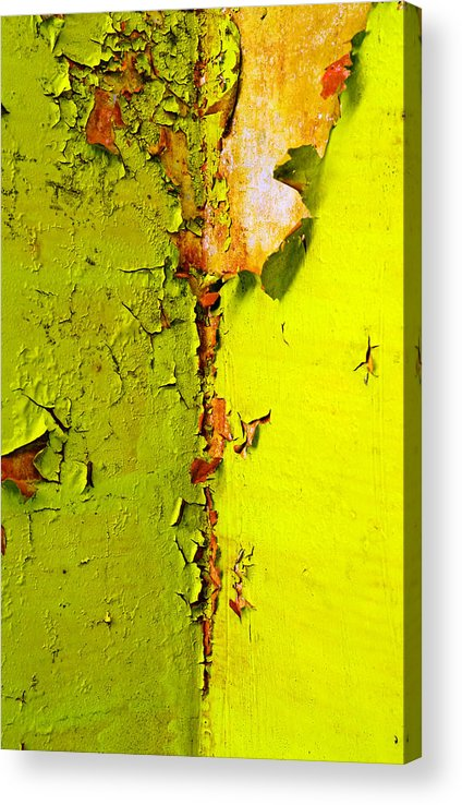Skip Hunt Acrylic Print featuring the photograph Going Green by Skip Hunt