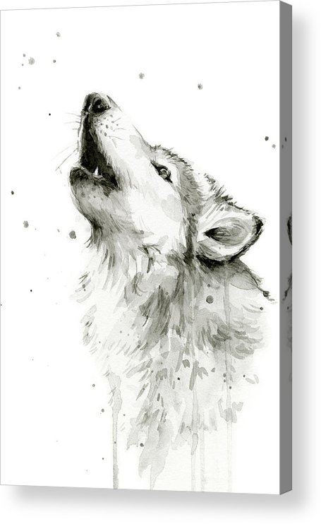 Watercolor Acrylic Print featuring the painting Howling Wolf Watercolor by Olga Shvartsur