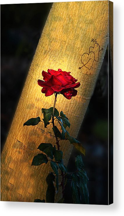 Photo Acrylic Print featuring the photograph RG Loves CA by Richard Gordon
