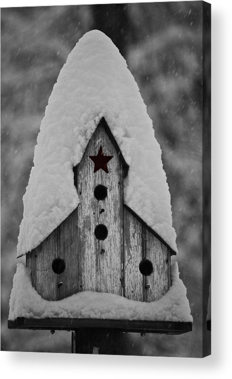 Snow Acrylic Print featuring the photograph Snow Covered Birdhouse by Teresa Mucha