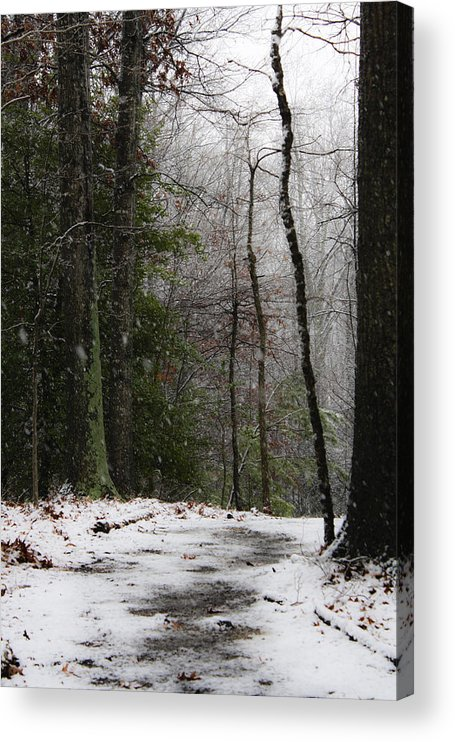 Snow Acrylic Print featuring the photograph Snowy Trail Quantico National Cemetery by Teresa Mucha