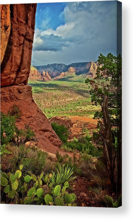 Nature Acrylic Print featuring the photograph View From A Vortex, Cathedral Rock, Sedona, Arizona by Zayne Diamond Photographic