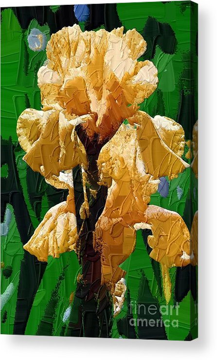 Diane Berry Acrylic Print featuring the painting Yellow Iris by Diane E Berry