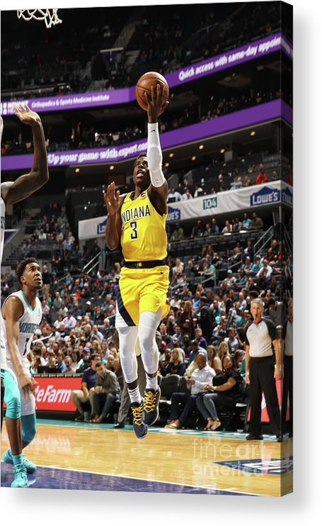 Nba Pro Basketball Acrylic Print featuring the photograph Indiana Pacers V Charlotte Hornets by Brock Williams-smith
