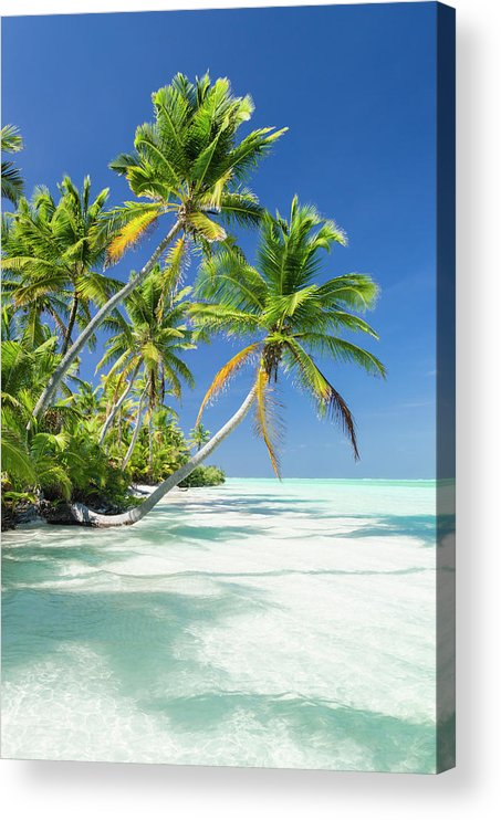 Scenics Acrylic Print featuring the photograph Tropical Beach Of An Atoll Lagoon And by Pete Atkinson