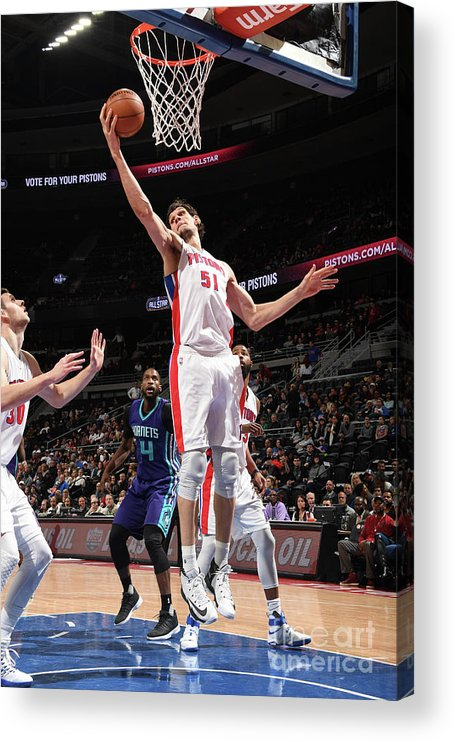 Nba Pro Basketball Acrylic Print featuring the photograph Charlotte Hornets V Detroit Pistons by Chris Schwegler