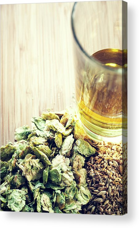 Empty Acrylic Print featuring the photograph Beer With Organic Hops And Malted Barley by Ryanjlane