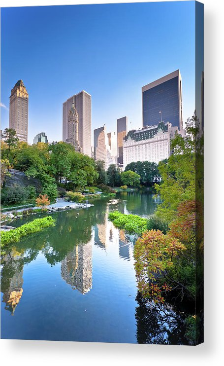 Downtown District Acrylic Print featuring the photograph Central Park In New York City by Pawel.gaul