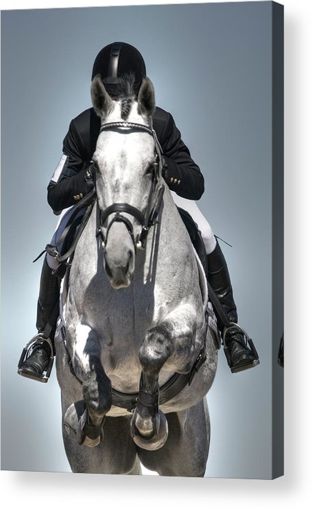 Horse Acrylic Print featuring the photograph Equestrian Jumper by Rhyman007