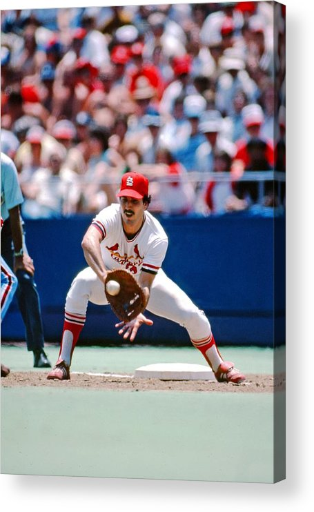 St. Louis Cardinals Acrylic Print featuring the photograph Keith Hernandez St. Louis Cardinals by St. Louis Cardinals, Llc