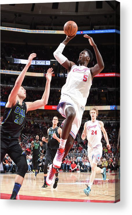 Nba Pro Basketball Acrylic Print featuring the photograph Bobby Portis by Randy Belice