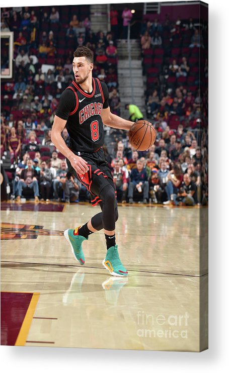Chicago Bulls Acrylic Print featuring the photograph Zach Lavine by David Liam Kyle