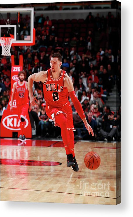 Chicago Bulls Acrylic Print featuring the photograph Zach Lavine by Jeff Haynes