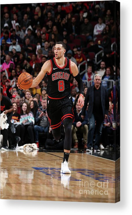 Chicago Bulls Acrylic Print featuring the photograph Zach Lavine by Gary Dineen