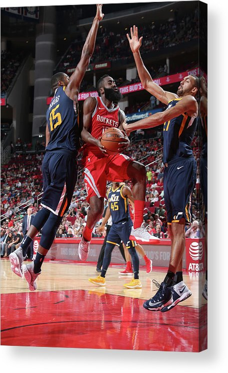 Nba Pro Basketball Acrylic Print featuring the photograph James Harden by Layne Murdoch