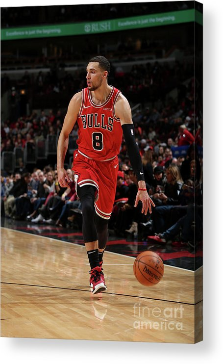 Nba Pro Basketball Acrylic Print featuring the photograph Zach Lavine by Gary Dineen