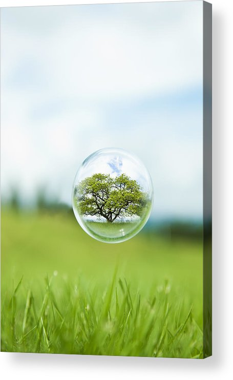 Environmental Conservation Acrylic Print featuring the photograph Globe In The Air by Yuji Sakai