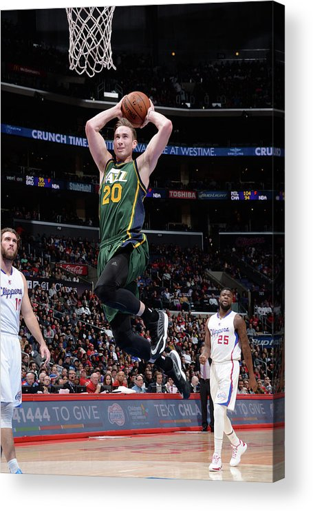 Nba Pro Basketball Acrylic Print featuring the photograph Gordon Hayward by Andrew D. Bernstein