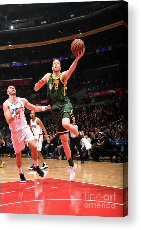 Nba Pro Basketball Acrylic Print featuring the photograph Joe Ingles by Andrew D. Bernstein