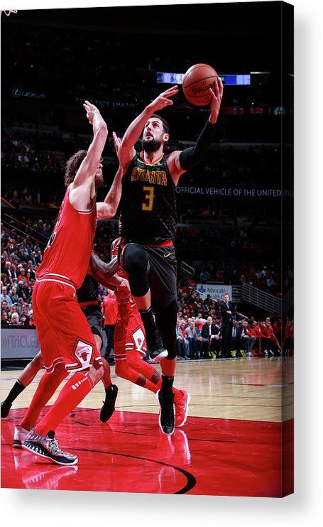 Nba Pro Basketball Acrylic Print featuring the photograph Marco Belinelli by Jeff Haynes