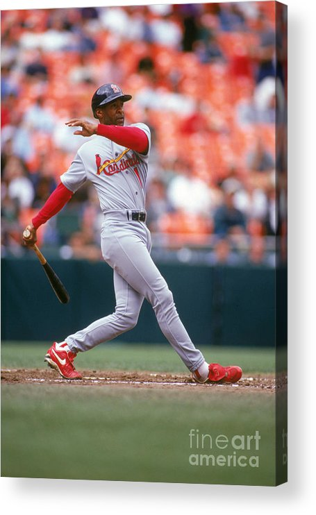 St. Louis Cardinals Acrylic Print featuring the photograph Ozzie Smith by Don Smith