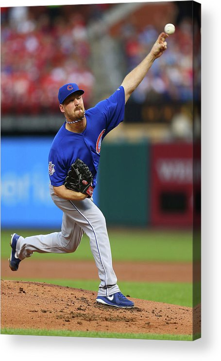 St. Louis Acrylic Print featuring the photograph Travis Wood by Dilip Vishwanat
