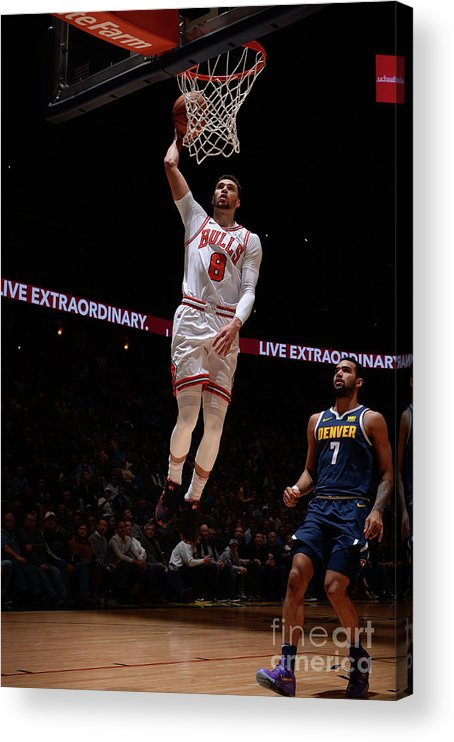 Chicago Bulls Acrylic Print featuring the photograph Zach Lavine by Bart Young