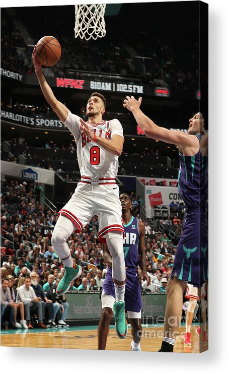 Chicago Bulls Acrylic Print featuring the photograph Zach Lavine by Kent Smith