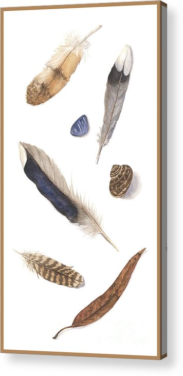 Feathers Acrylic Print featuring the painting Found Treasures by Lucy Arnold
