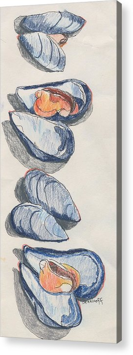 Colored Pencil Acrylic Print featuring the drawing Mussels by Jan Bennicoff