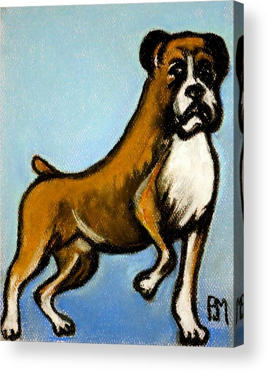 Boxer Acrylic Print featuring the drawing Boxer by Pete Maier