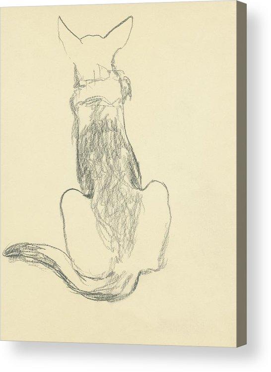 Animal Acrylic Print featuring the digital art A German Shepherd by Carl Oscar August Erickson