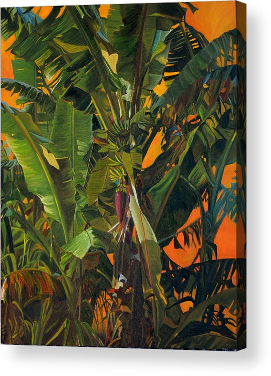 Banana Tree Acrylic Print featuring the painting Eugene and Evans' Banana Tree by Thu Nguyen