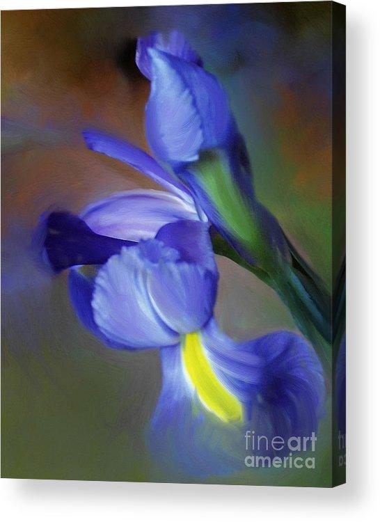 Iris Acrylic Print featuring the painting Iris Dream by Francine Dufour Jones