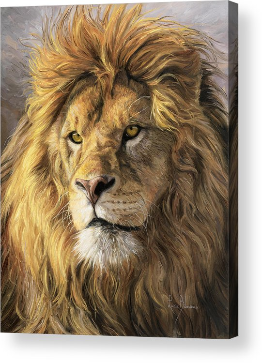 Lion Acrylic Print featuring the painting Portrait Of A Lion by Lucie Bilodeau