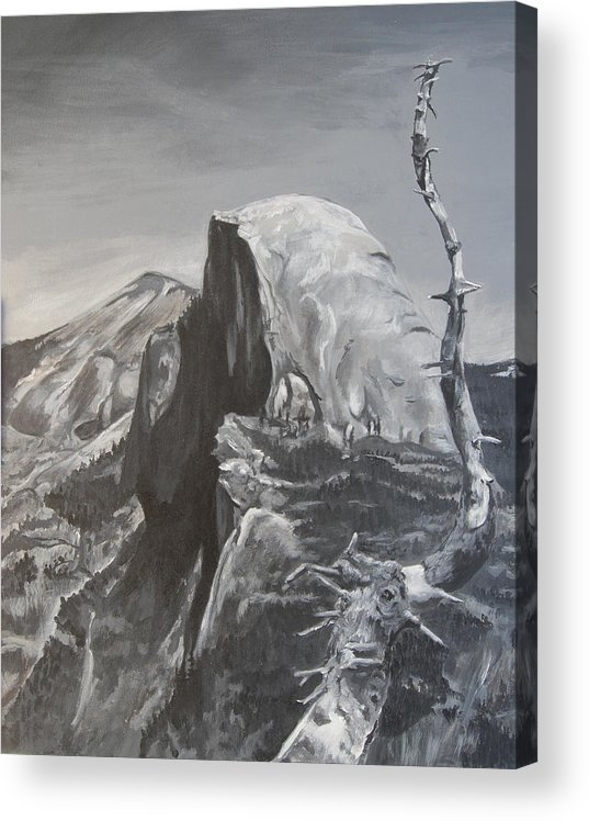 Black And White Painting Acrylic Print featuring the painting Half Dome Tree by Travis Day