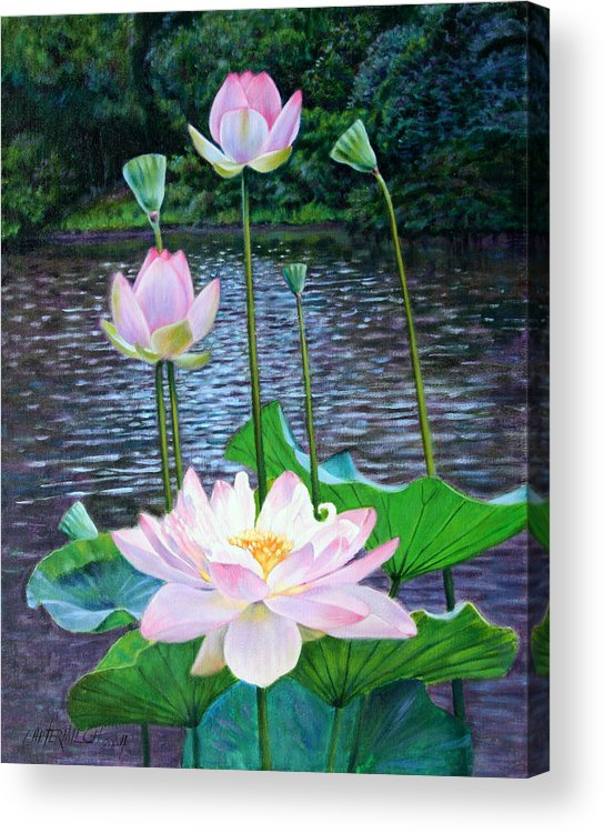Lotus Acrylic Print featuring the painting Lotus by John Lautermilch
