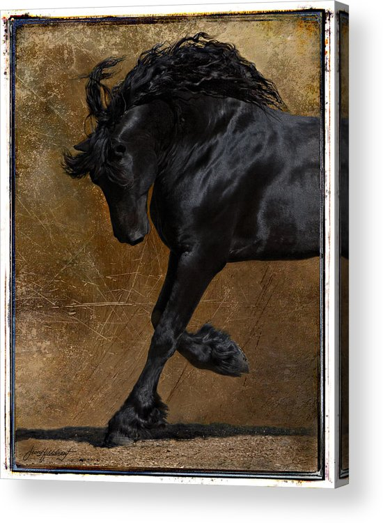 Horse Acrylic Print featuring the photograph A Regal Bow by Jean Hildebrant