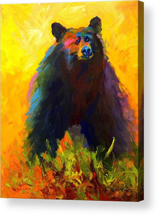 Western Acrylic Print featuring the painting Alert - Black Bear by Marion Rose