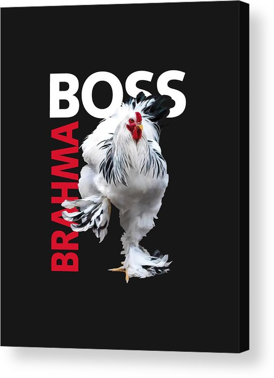 Light Brahma Acrylic Print featuring the digital art Brahma Boss II t-shirt print by Sigrid Van Dort
