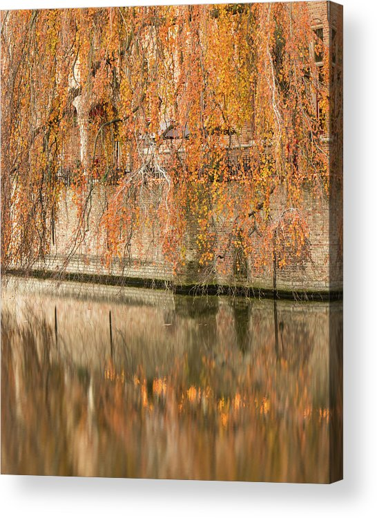 Fall Acrylic Print featuring the photograph Fall in Bruges, Belgium by Dalibor Hanzal