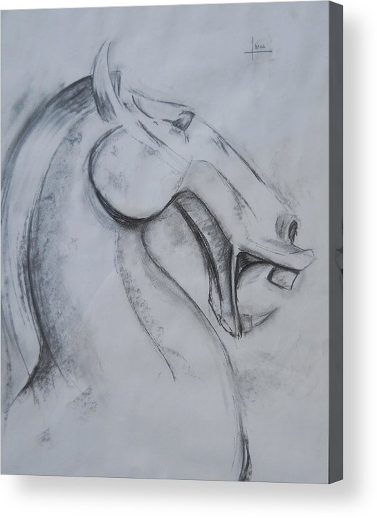 Horse Acrylic Print featuring the drawing Horse face by Victor Amor