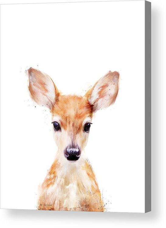 Fawn Acrylic Print featuring the painting Little Deer by Amy Hamilton